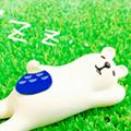 いびき防止(睡眠時無呼吸症候群の予防)