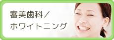 審美歯科 / ホワイトニング